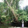 Refresh your mind at Ngerengere River