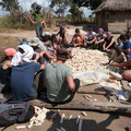 Volunteers learn how to harvest maize in Lukwambe village