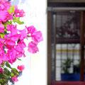 Casa patio C/ Frailes, 6. Córdoba