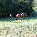 popey et Julien au bois