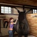 Mein Gestüt – Ein Leben für die Pferde