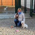 Чарли, Сара и наши далматинки