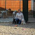 Арчи, Сара, Дирк и наши далматинки