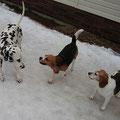 Лилу, Деби и Яся