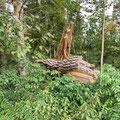Im Wald am THW Gelände