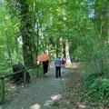 Wanderung um Fischbach