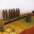 P-Zug bei der Ausfahrt von Brunntal