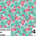 Flamingo Seerosen