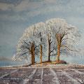 WINTER FIELD, Stirlingshire Schottland (2014), 48 cm x 36 cm. Nach einer Fotografie des britischen Fotografen Robert Fulton // With kind permission by the photographer *350*