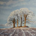 WINTER FIELD, Stirlingshire Schottland (2014), 48 cm x 36 cm. Nach einer Fotografie des britischen Fotografen Robert Fulton // With kind permission by the photographer
