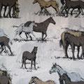 B Pferde