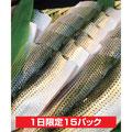 小肌の酢〆   ¥500 (1パック 3尾入)                   魚の 金駒
