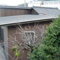 外観.金属製のまっすぐな屋根が増築部分です.