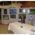 mon expo sur le thème de la roselière