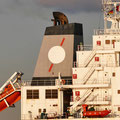 Axis Bulk Carriers, Athen