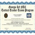 Level I Certification