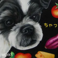 H様 愛犬ちゃっぴーボード(A5)