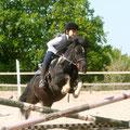 Notre jeune cavalière