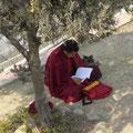 tibetischer Mönch in Boudanath bei Kathmandu