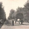Route de La Baule au Pouliguen, charette pour le transport du foin