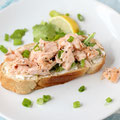 open faced fresh salmon salad sandwich