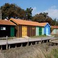 Maisons ostréicoles en couleur à Fort royer (Boyard ville) en marais basse