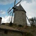 Le moulin d'Omer dans le village de Cucugnan (11) est un moulin à vent du XVIIème entièrement restauré et remis en exploitation par Roland Feuillas. Ce boulanger moud à la meule des céréales anciennes et issues de l'agriculture bio