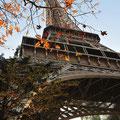 """La tour Eiffel Paris 2008,""""Ma Photo préférée"""""""