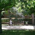 Une soeur se reposant sur un banc...