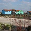 Maisons ostréicoles en  couleur à Le petit village