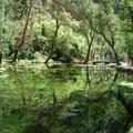 """Lac """"le miroir"""""""