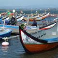 Barques multicolores et personnalisées à Aveiro