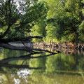 Ballade au bord de l'eau