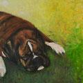 Knuss                          2010        60x60      Acryl auf Lwd.