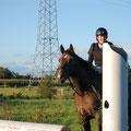 Pferd freut sich, Reiter fertig mit der Welt