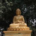 Buddha neben der Wildganspagode