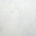 Wonderful world 2011 パネル、キャンバス、ジェッソ、アクリル 116.7×91.0㎝