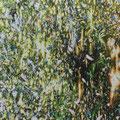 森を転ばせ夜穴が明く 2017 綿布、アクリル 72.7×91.0㎝