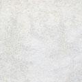 遊景 2013 キャンバス、アクリルガッシュ 65.2×91.0㎝