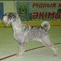 Сильва - Чемпион Казахстана