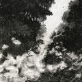 E.D.E.N , 2021 , charcoal on paper , 350 x 263 cm
