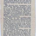 Zeitungsartikel zum Bau des Holzturmes