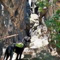 Ja, genau. Da müssen wir hoch. Im Elbsandsteingebirge gibt es gefühlt mindestens eine Million Treppenstufen. Mal aus Felsgestein...
