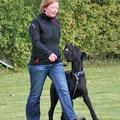 Der Schnauz und ich bei unserer Begleithundeprüfung. Oktober 2011.