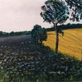 Felder bei Eutin,1996,40x60,Jens Walko