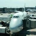 Direktflug mit Lufthansa