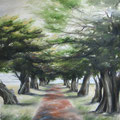 The Drive Way 180x180cm