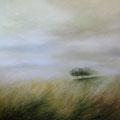 Cypress #2 120x120 cm