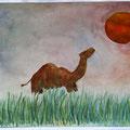 Misi, das Kamel 29,7x42