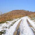 © Traudi - Auf dem Weg zum Ailenberg